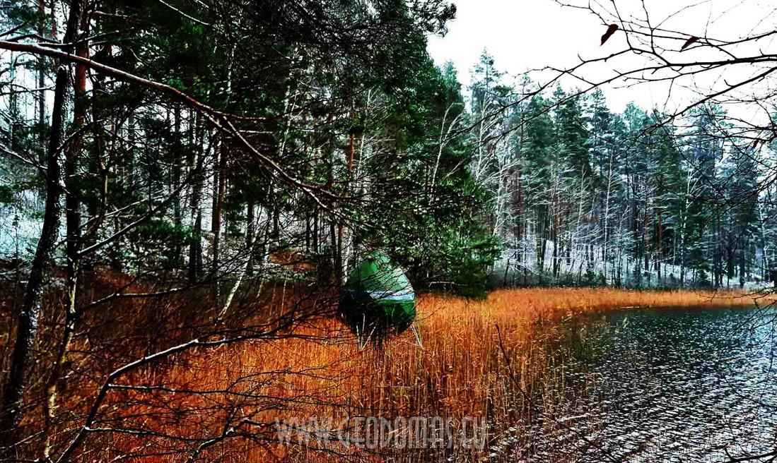 7m2 ⌀3m Sferiniai nameliai ant medžių |  Crystal Tree gamtos apsuptyje